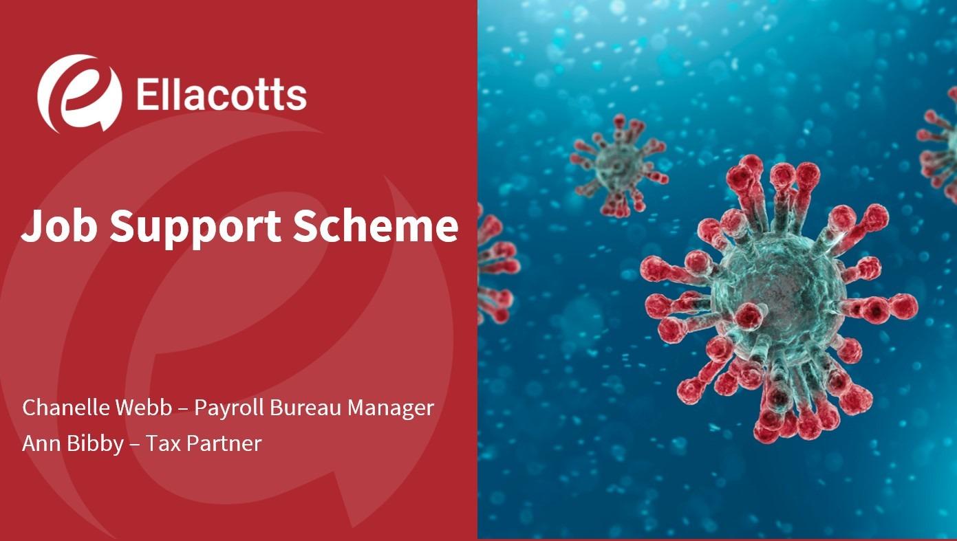 Job Support Scheme webinar