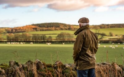 How to ensure maximum tax relief on your farm expenditure